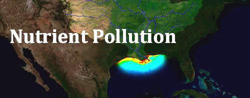 Nutrient Pollution Illinois Environmental Council