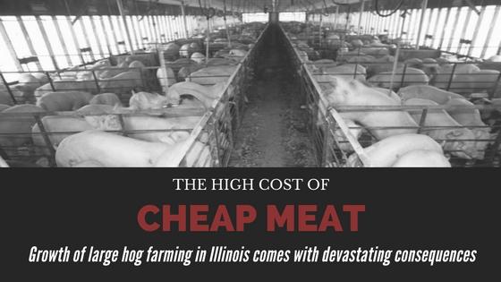 Cheap_meat_banner