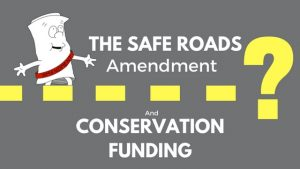 Safe Roads Amendment