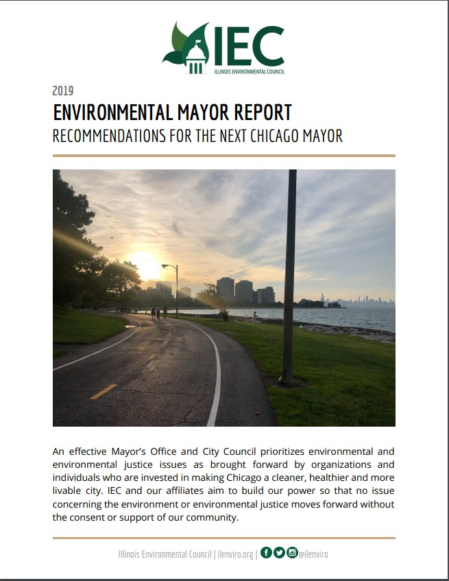 Environmental Mayor Report