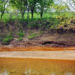 Coal Ash in Vermilion River